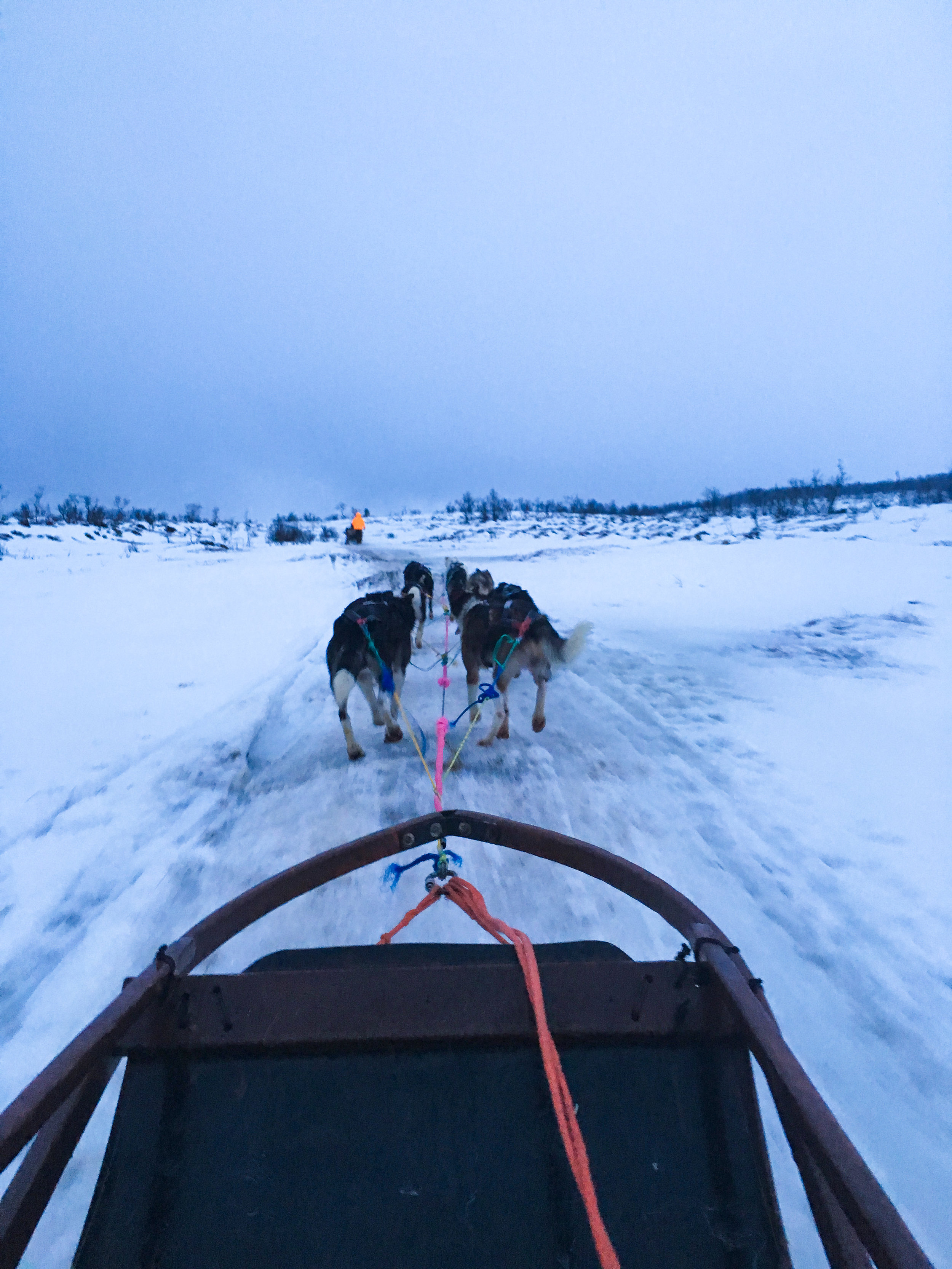 Tromso (8 of 1).jpg
