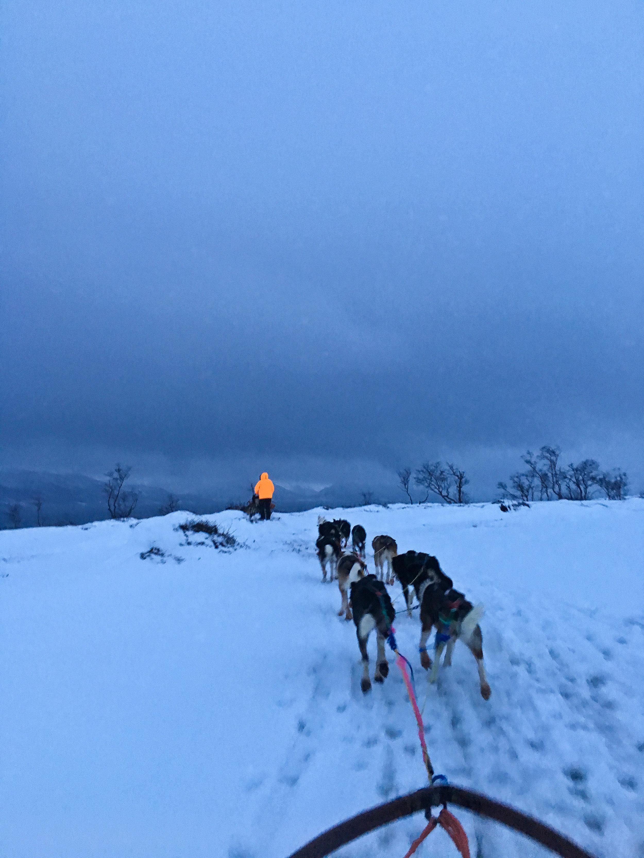 Tromso (9 of 1).jpg