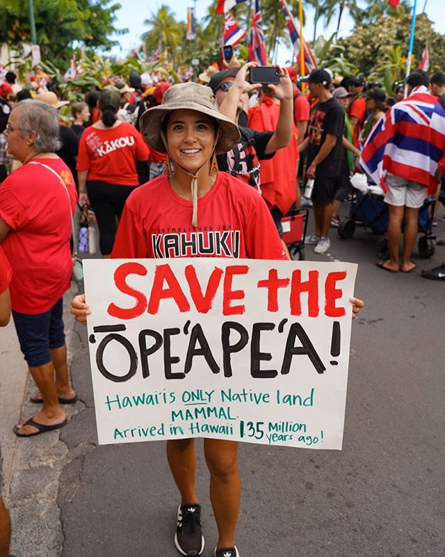 Over 20,000 Kama'aina marched through the streets of Waikīkī in Unity for Aloha 'Āina. There was so much mana radiating out of everyone and being received by bystanders along Ala Moana and Kalākaua ... in hotels and on the streets. Our messages were seen and our stances heard. My 'Ohana and I along with our community brought awareness of Monster Wind Turbines that are set to be erected in Kahuku this week. There will be 8 turbines each 568ft tall (taller than any turbine and building in Hawaii). They are killing the endangered Hawaiian Hoary Bat ('Ōpe'ape'a), Nēnē, and Pueo- amongst other things. They are not Pono and don't create enough renewable energy in an efficient matter. It's all about the money. Kahuku says 'A'ole Turbines!!!! #aoleturbines #savetheopeapea #kahuku #keepthecountrycountry @hawaiinewsnow @khonnews @prideofgypsies @gretathunberg @leonardodicaprio @kumuhina