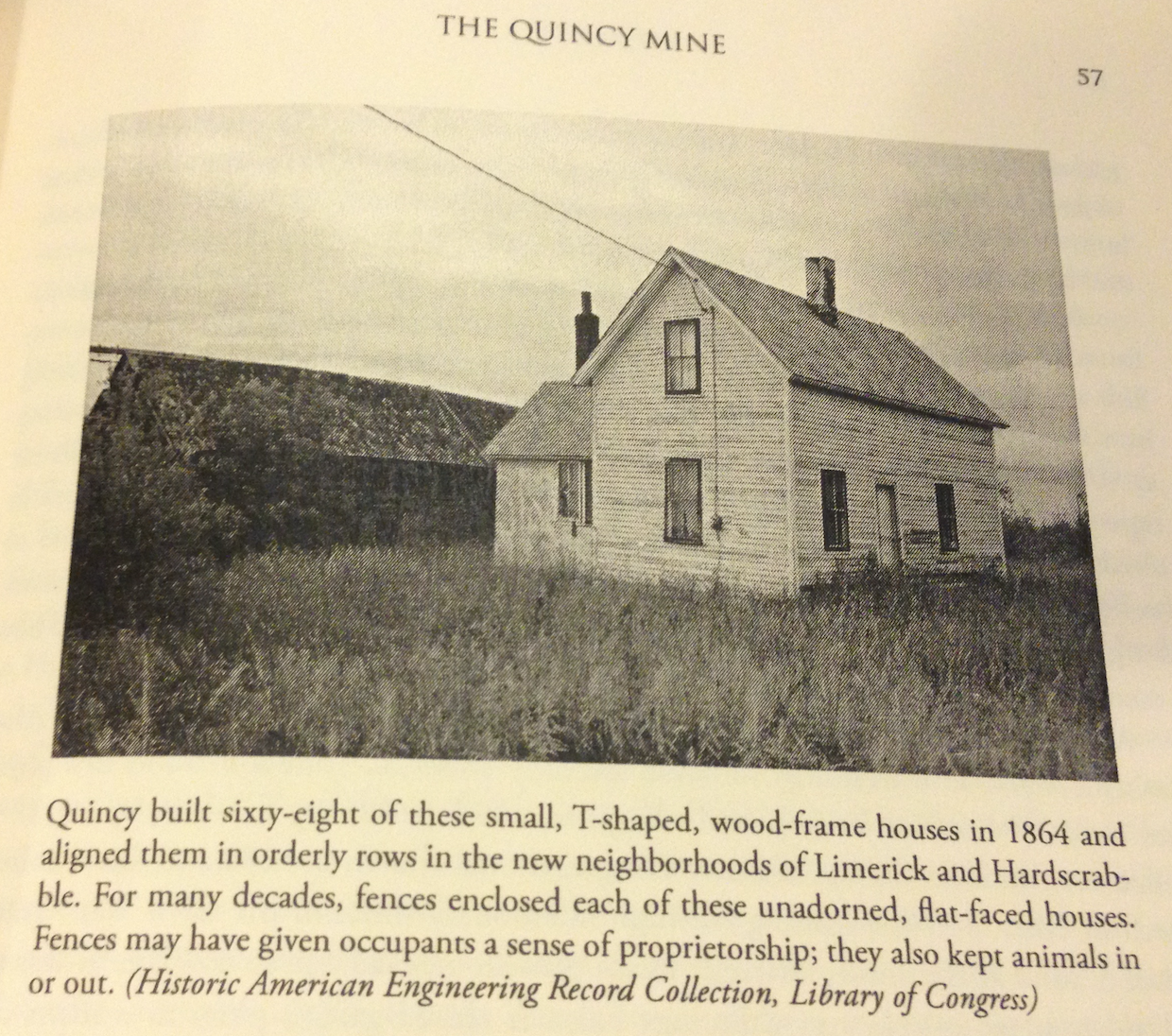 The T-Shaped houses built by Quincy Mine.