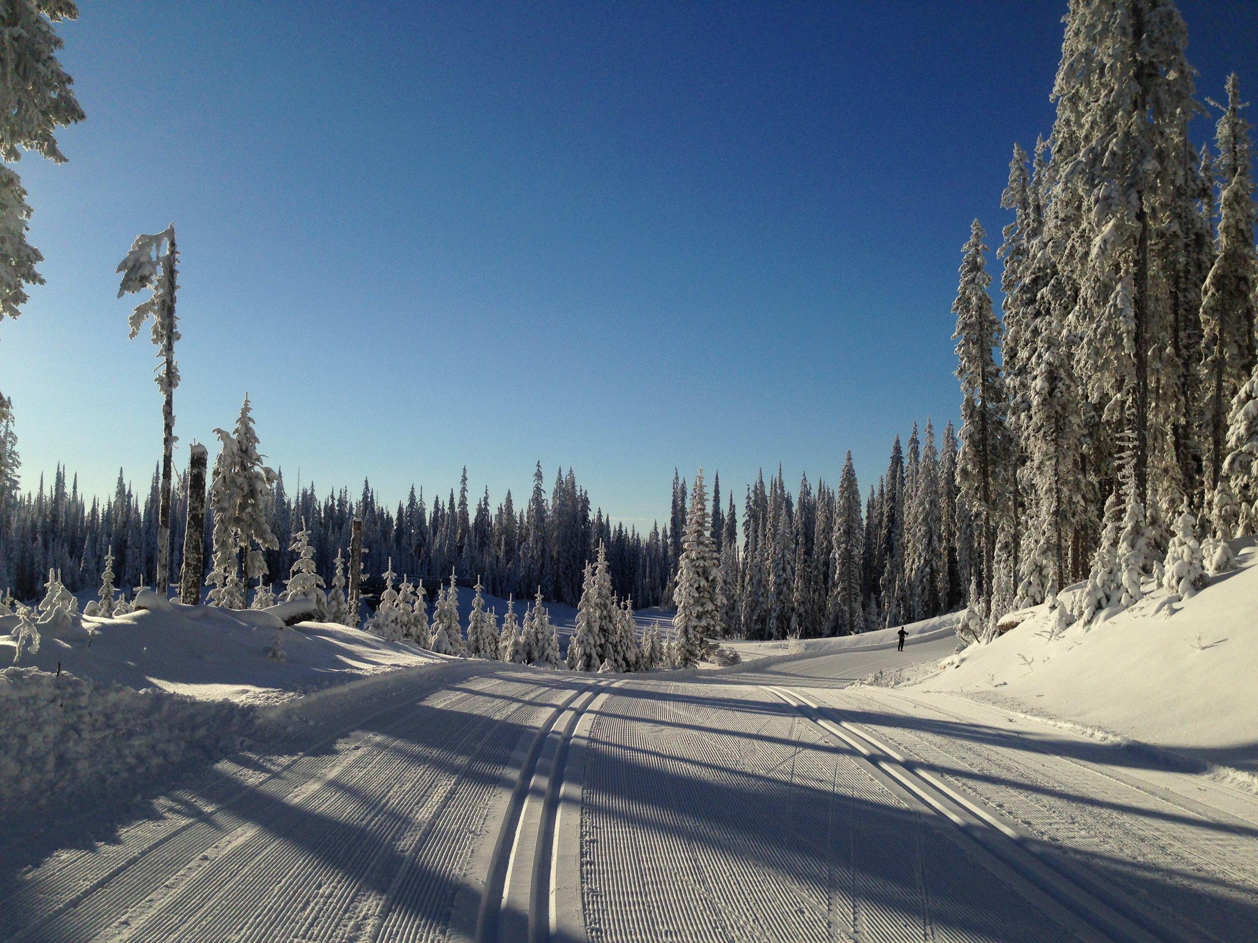 Skiing at Sovereign Lake.
