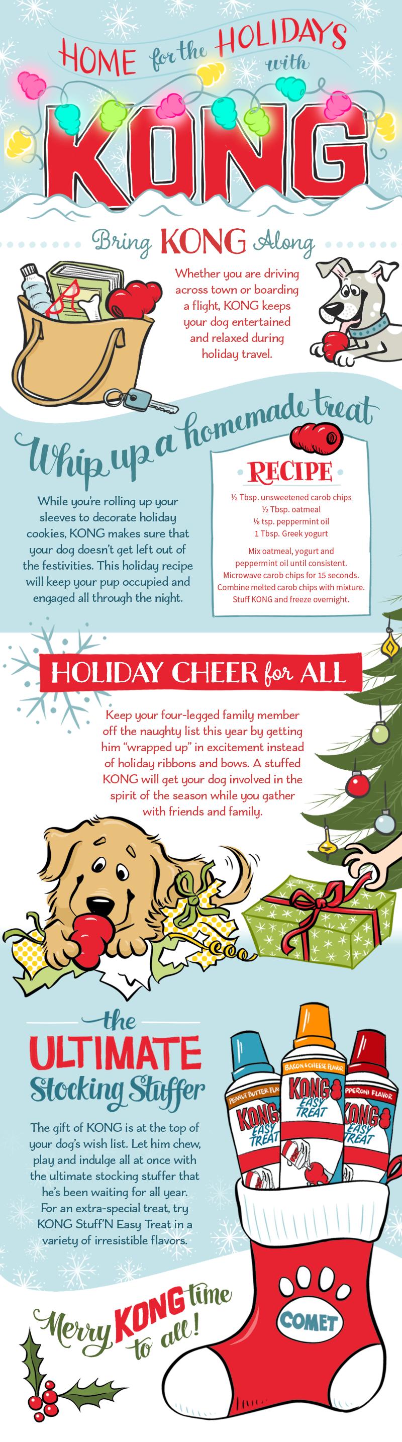 Infographic illustration & design for Kong/Pet Central