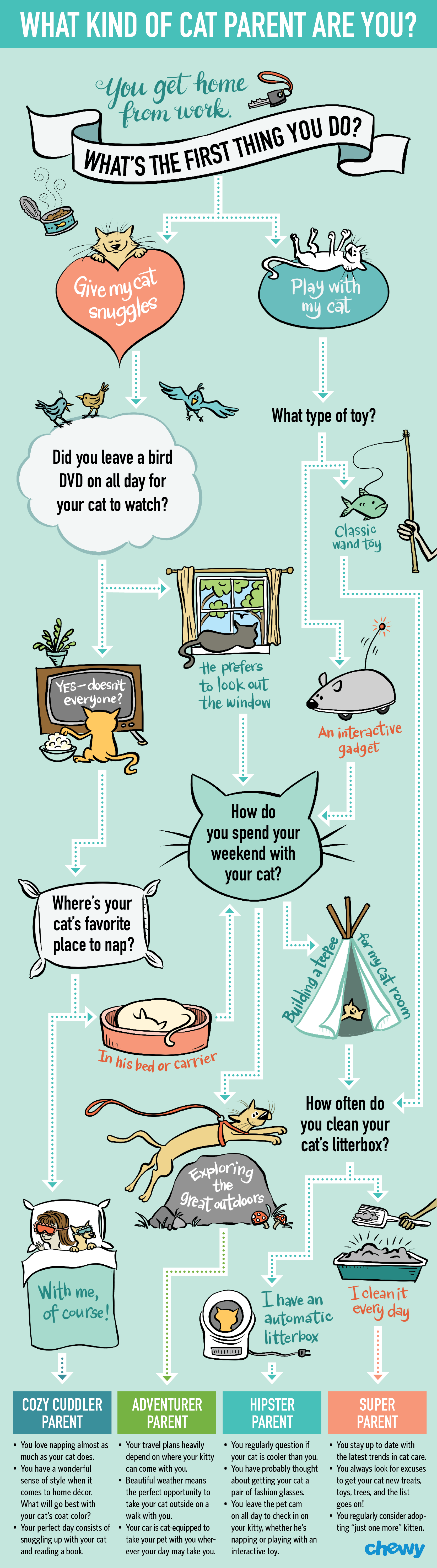 Infographic illustration & design for chewy.com