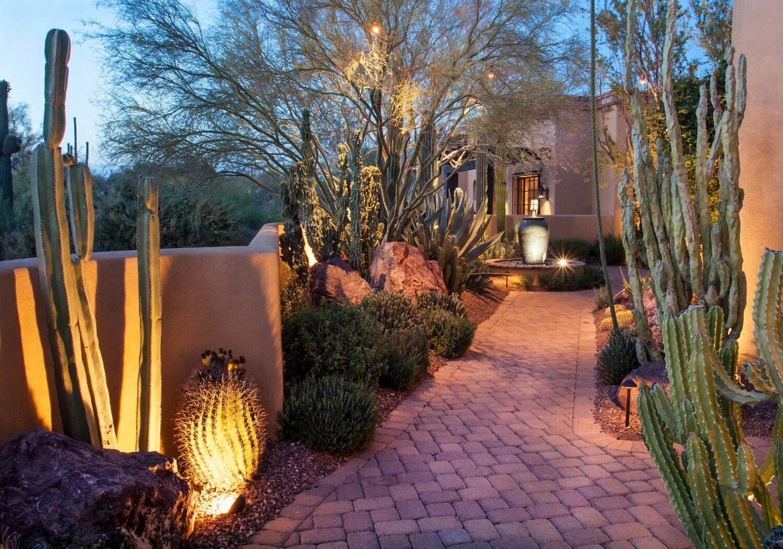 Desert Landscape Lighting Ideas