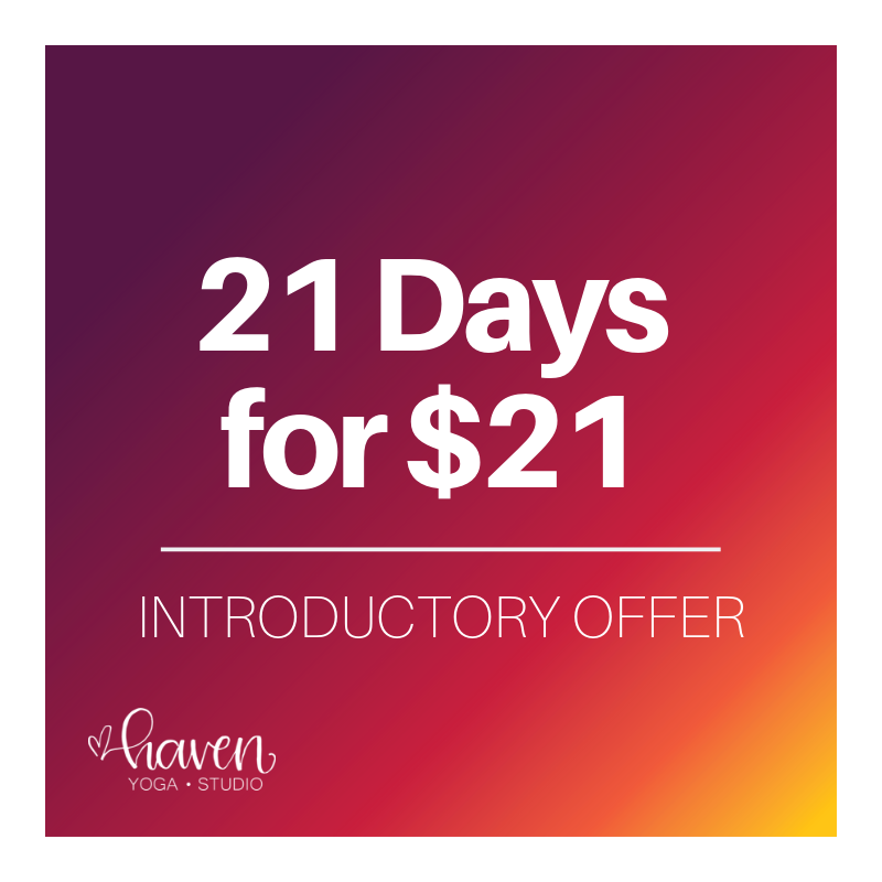 Brand new to Haven? - sign up today for a special introductory rate.