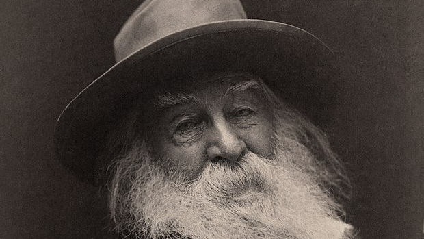 Walt Whitman  (c. 1887), photographed by George Cox — Wikimedia Commons (Public Domain)