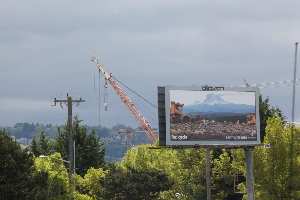 billboard trees.jpg