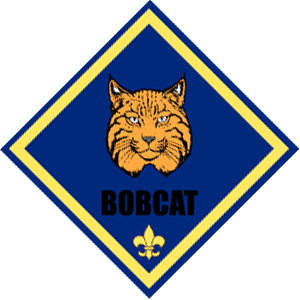 The Bobcat rank is the entry-level rank for all cub scouts.