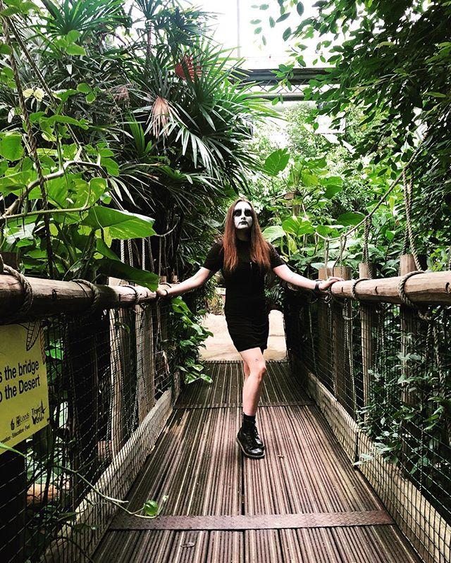 Rainforests are kvlt. 🖤🖤🖤 . . . . . #corpsepaint #ropebridge #blackmetal #metalheadgirl #rainforest