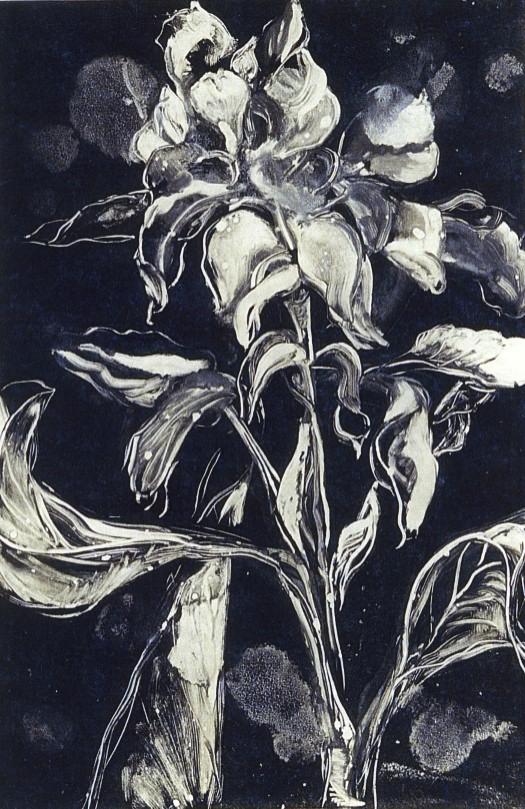 black flowers010.jpg