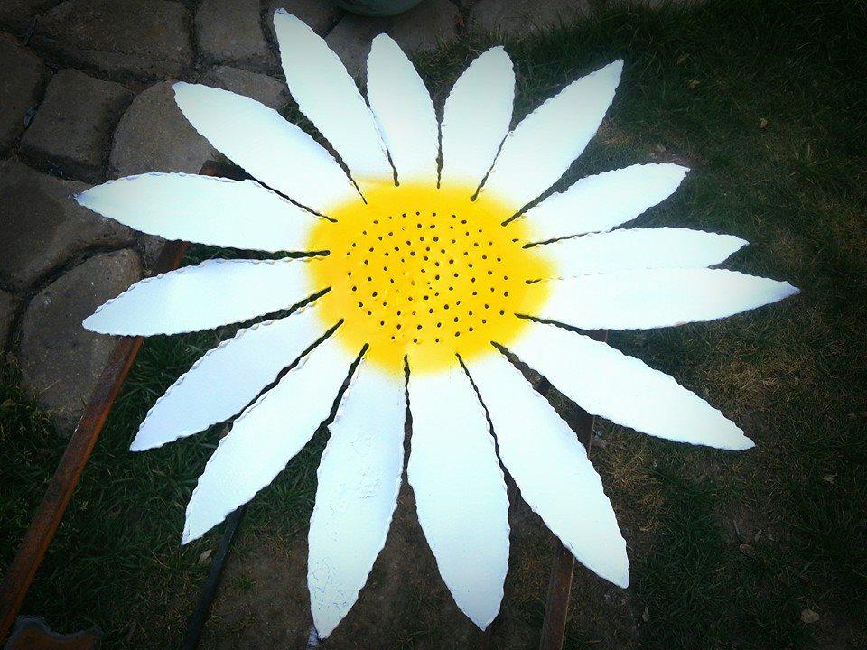 daisy2.jpg
