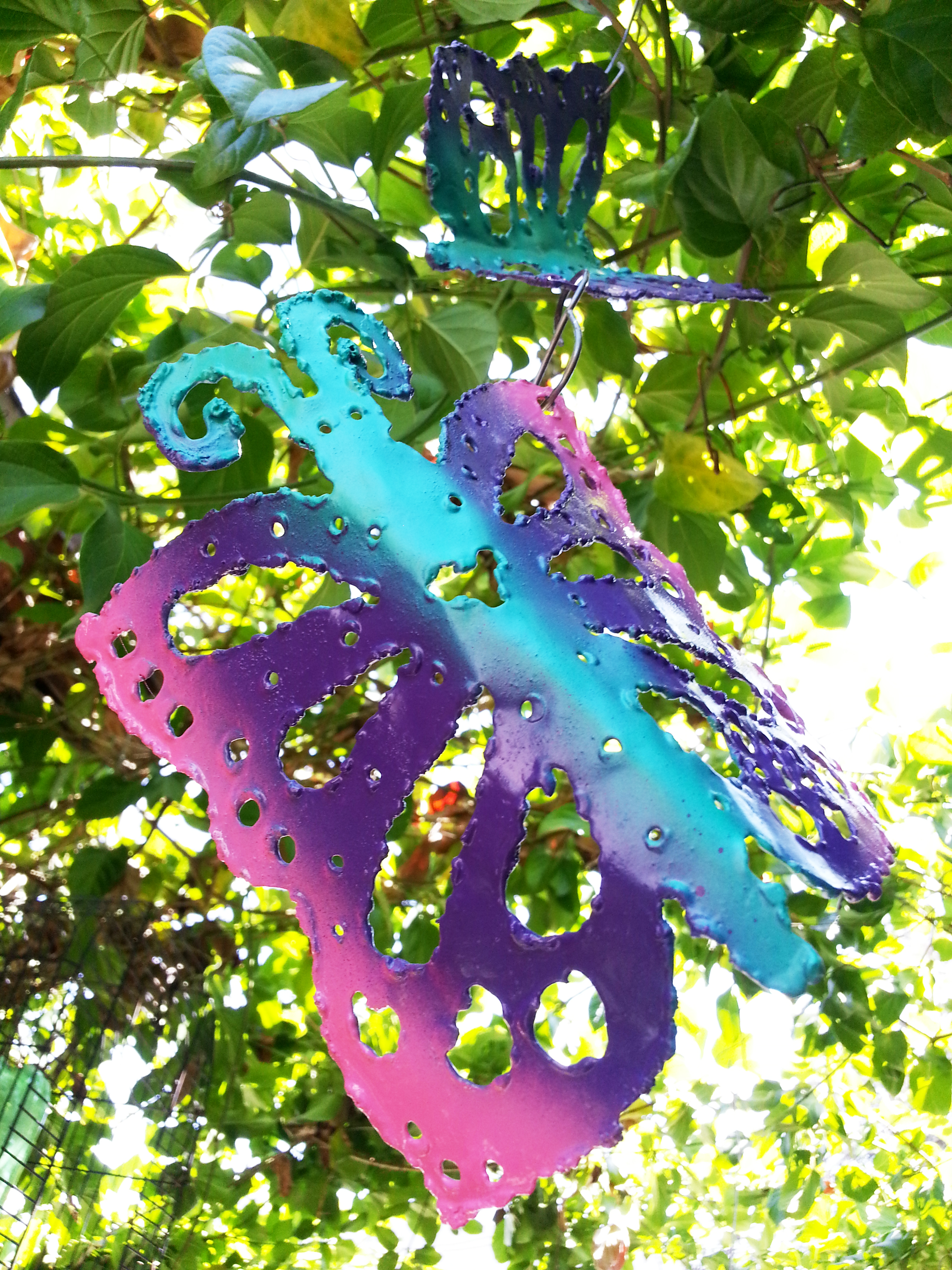 butterfly0001.jpg
