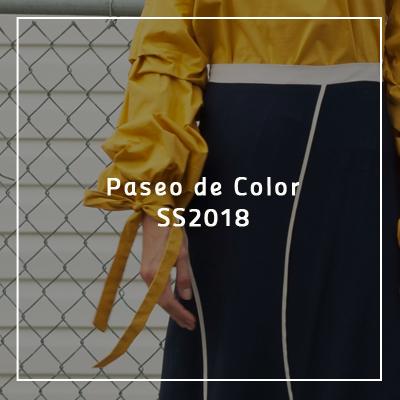 paseo-de-color-2018.png