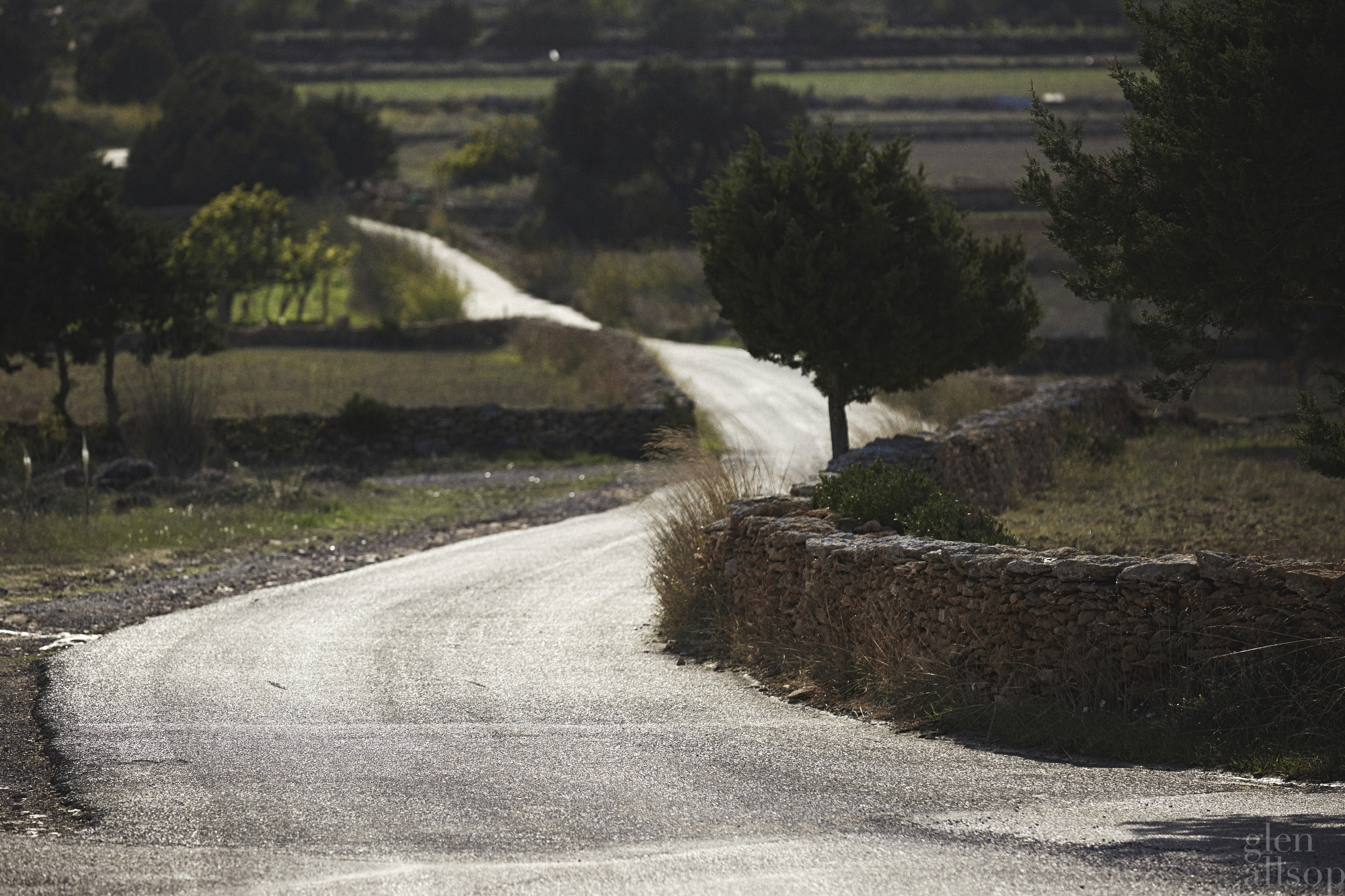 formentera-winding road-fields