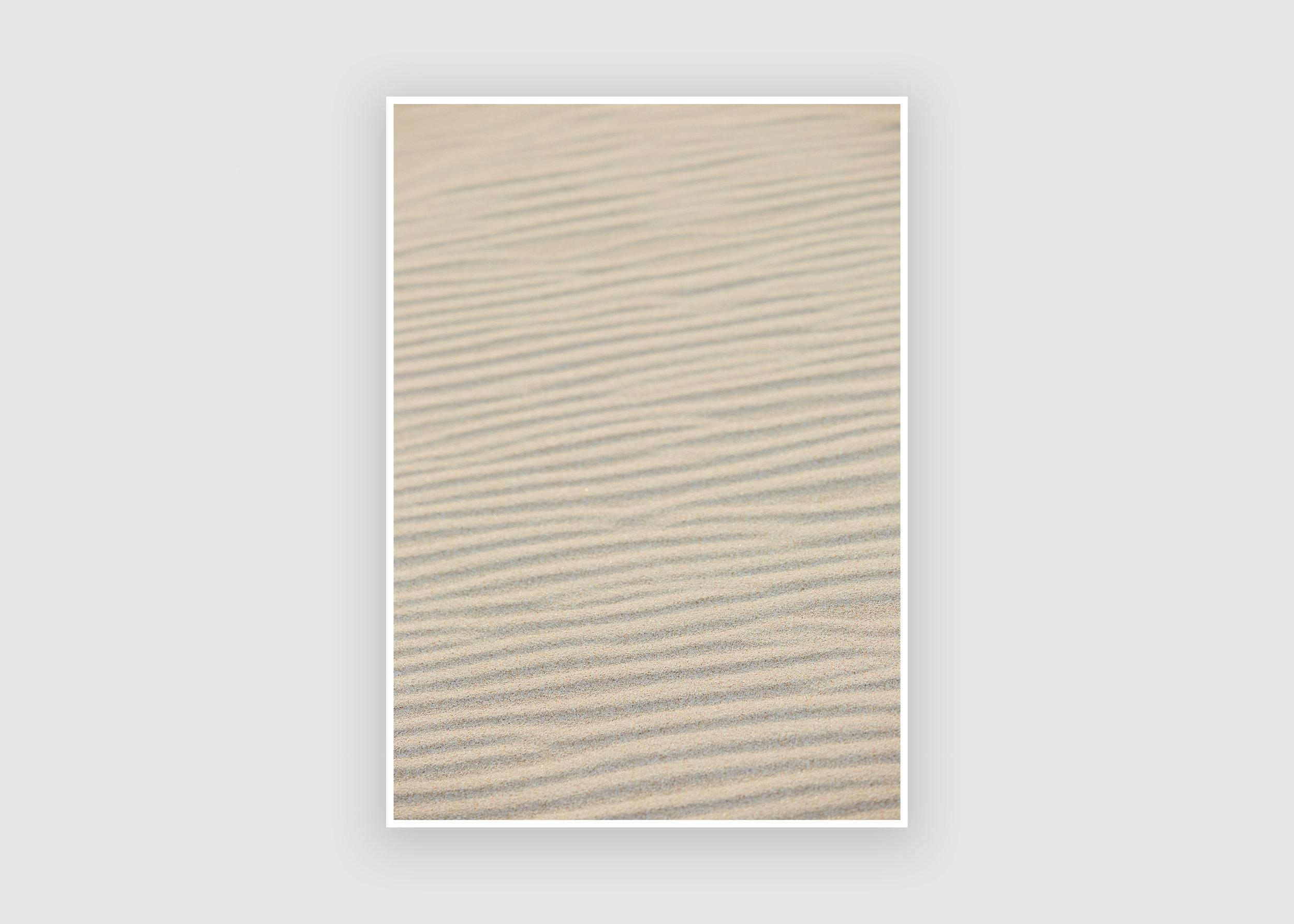 Sand Weaver.JPG