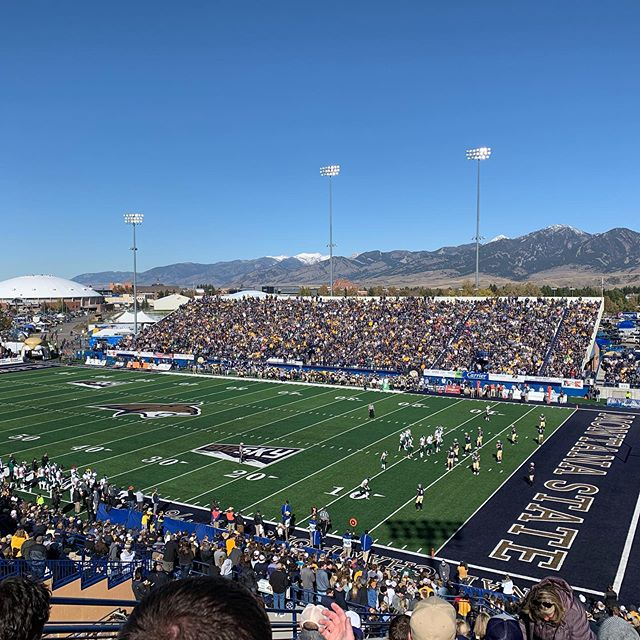 Let's go Cats!!!💙💛 #MSUhomecoming2019