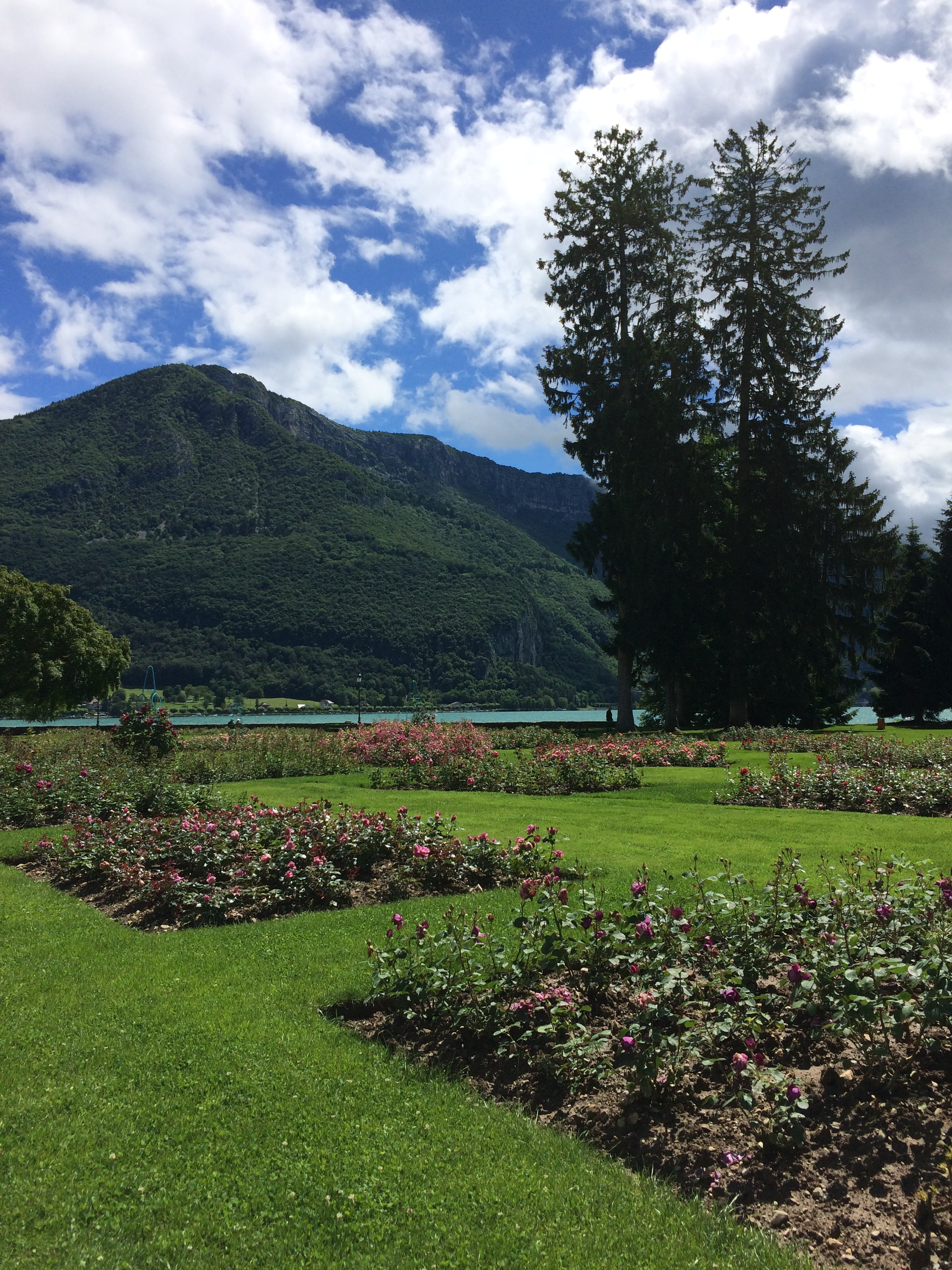 View from the gardens near the MIFA site.