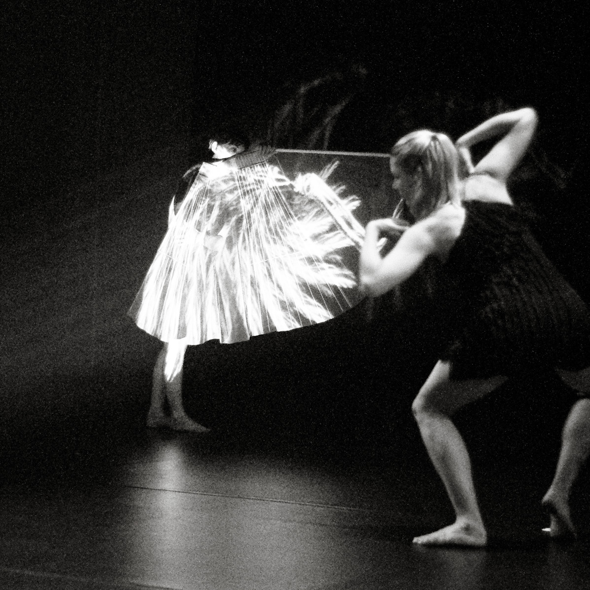 the curiosities - design collaborator2009