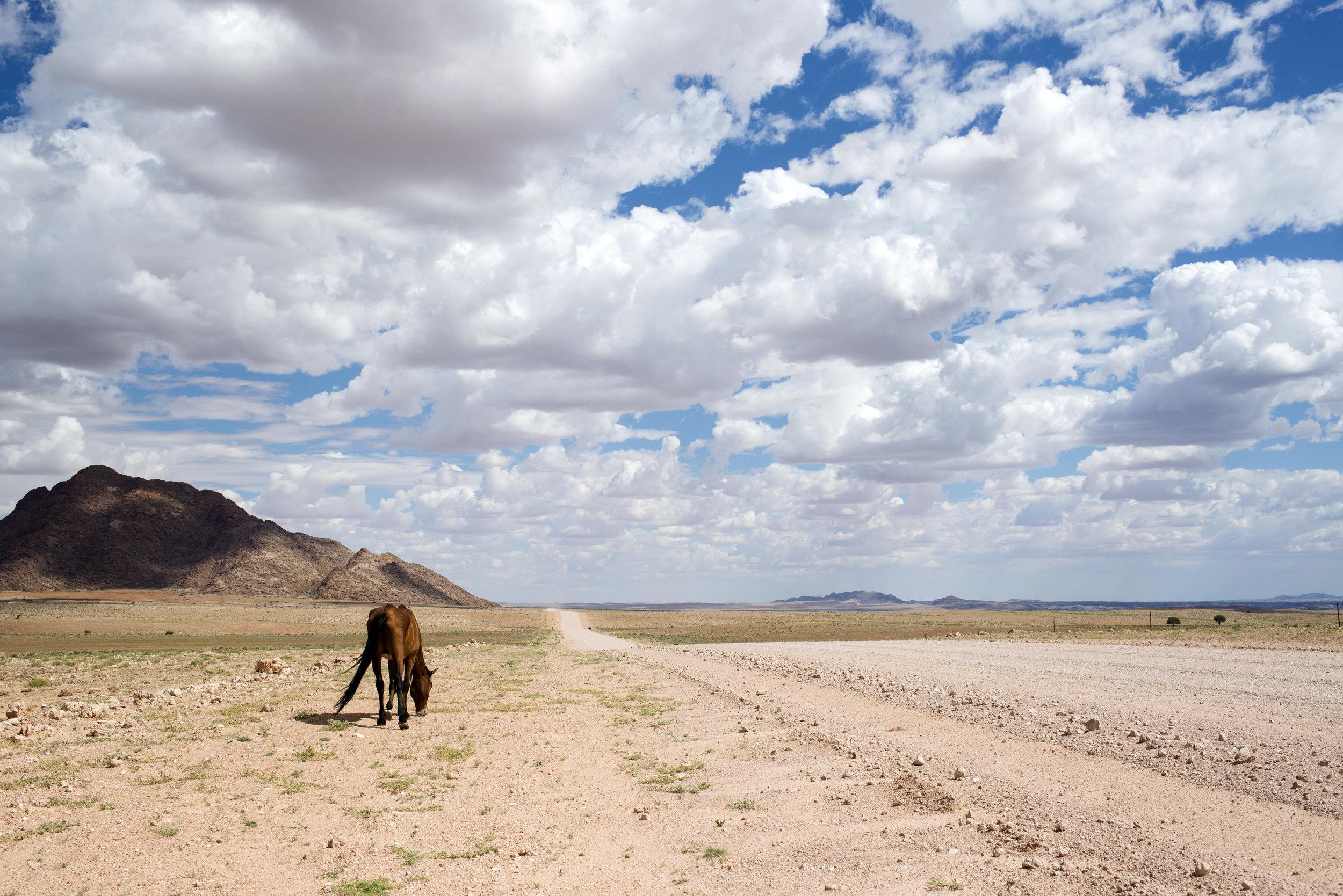 Namibia, 2017