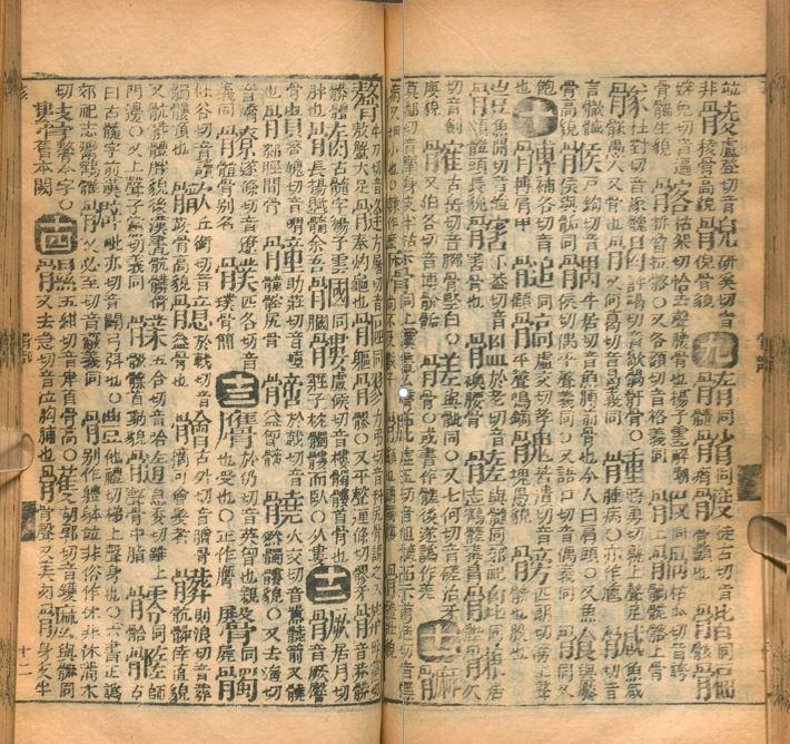 Zhenzhen Lu