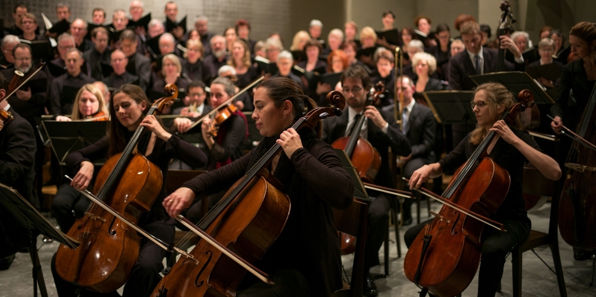 person-music-concert-audience-musician-profession-1386645-pxhere.com.jpg