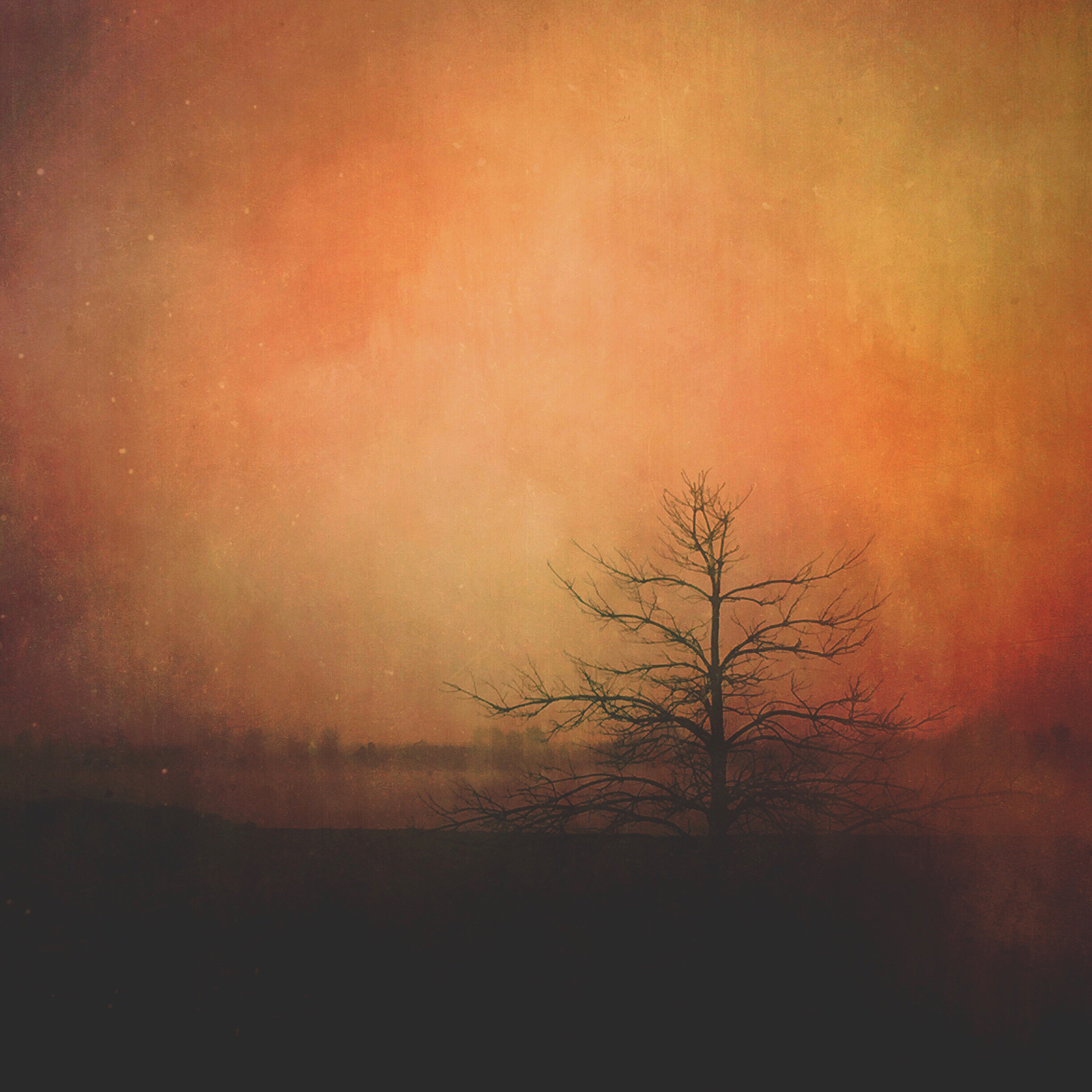 AAS_The Fire Within_300_8x8.jpg