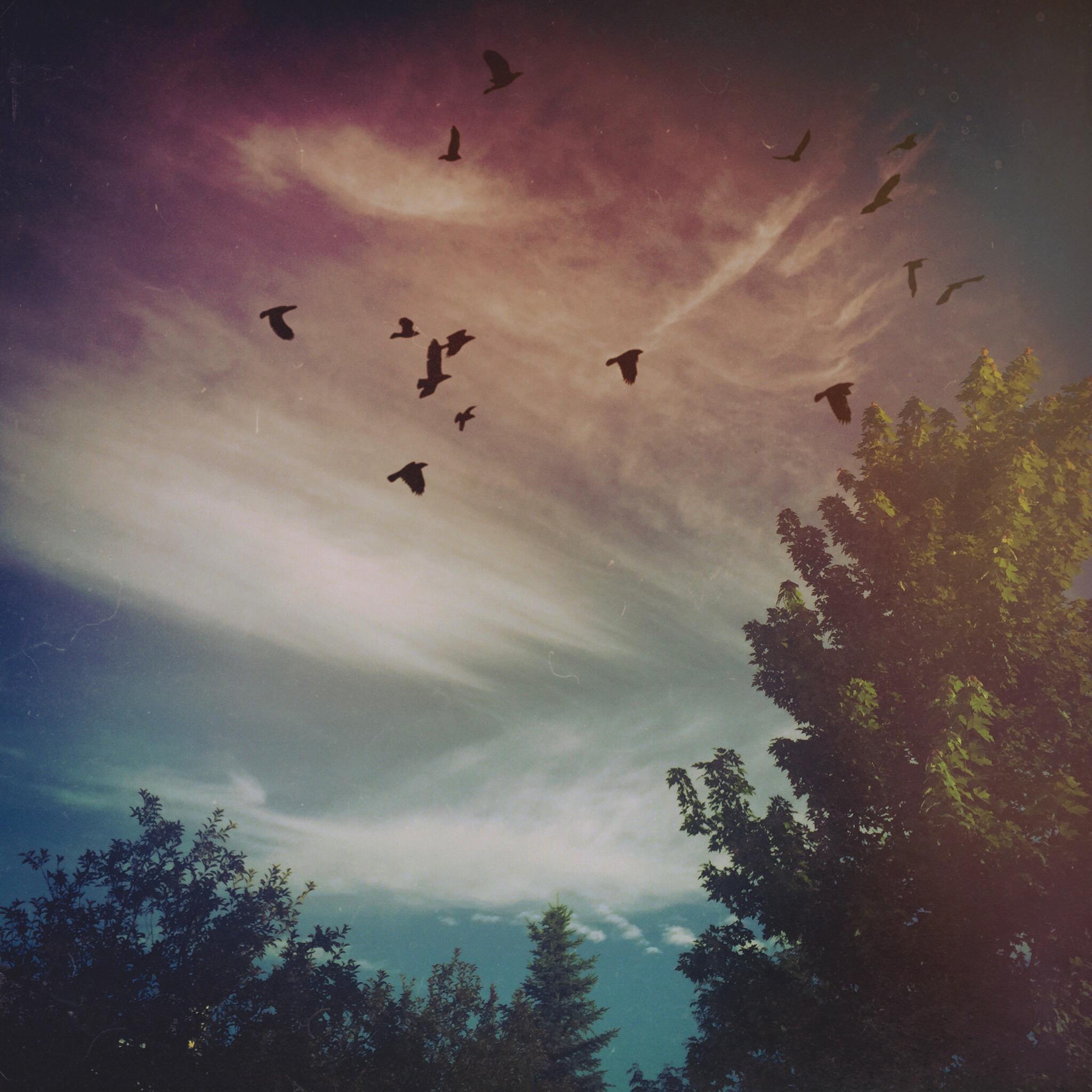 Lovely Sky.JPG