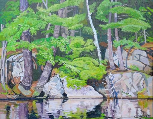 Summer's Pine Maple and Birch.jpg
