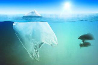 The-Impact-of-Ocean-Pollution.jpg