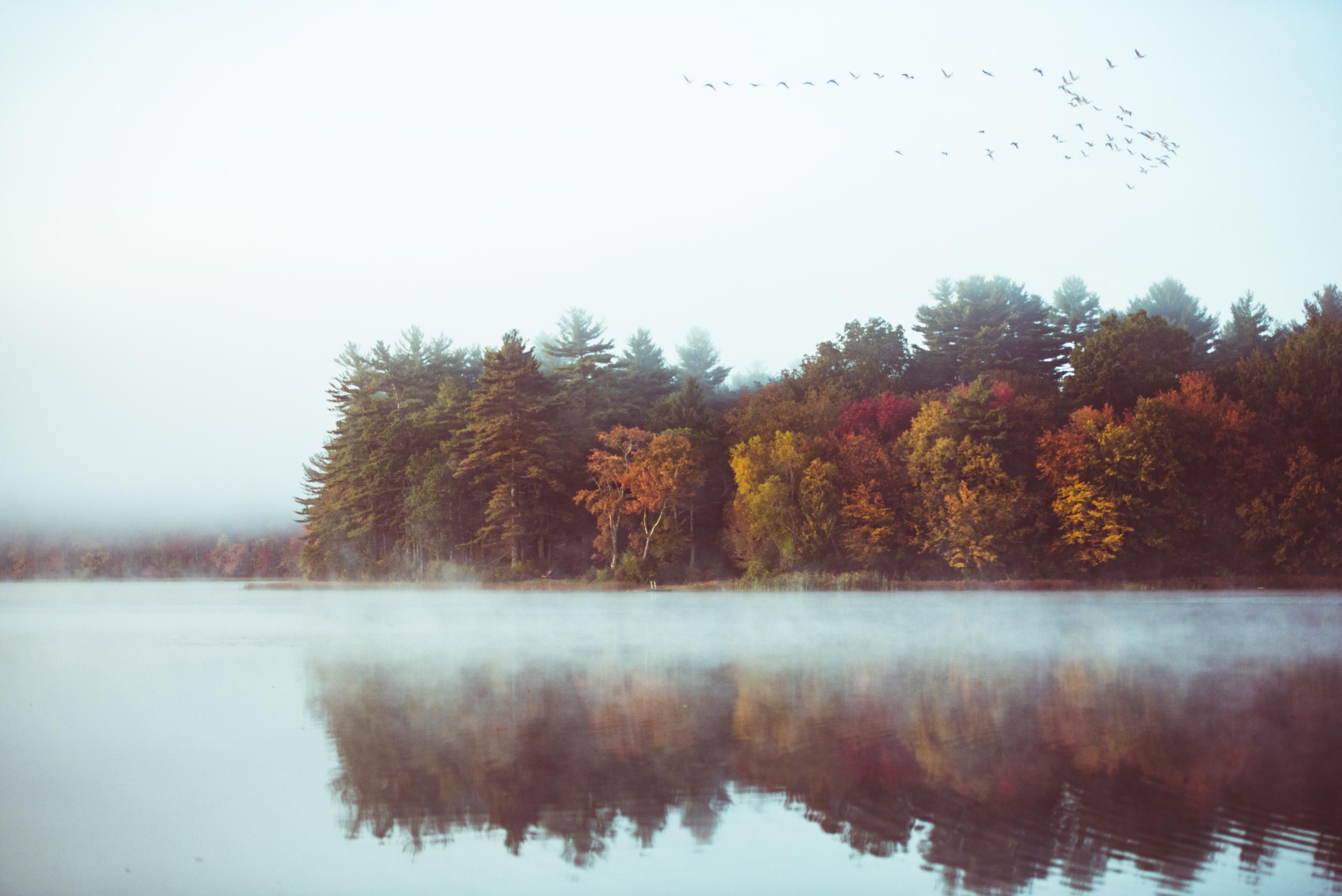 Rhode Island Fall Foliage