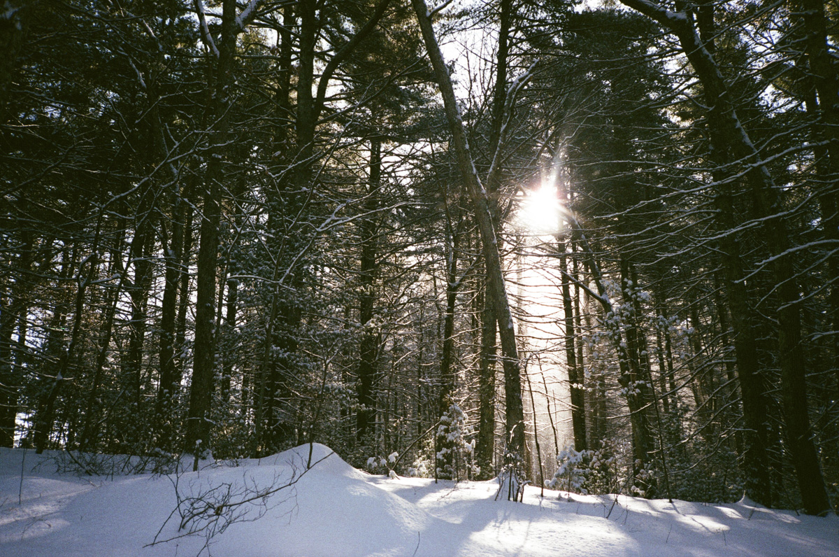35mm winter in RI12.jpg
