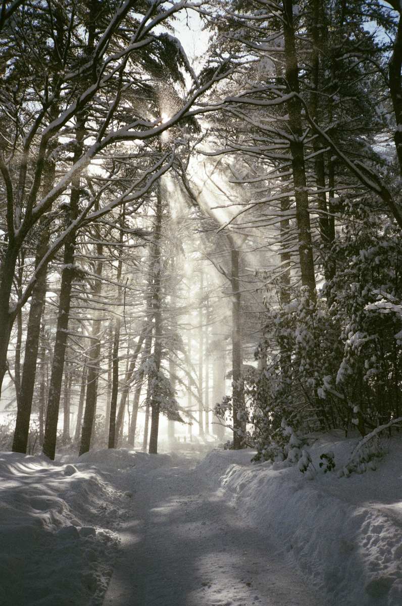 35mm winter in RI11.jpg