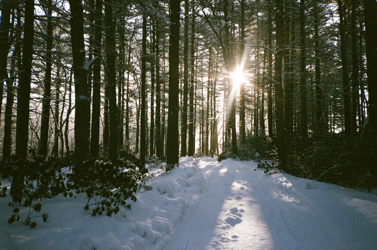 35mm winter in RI15.jpg