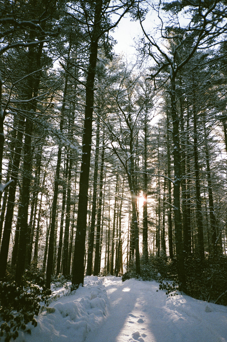 35mm winter in RI14.jpg
