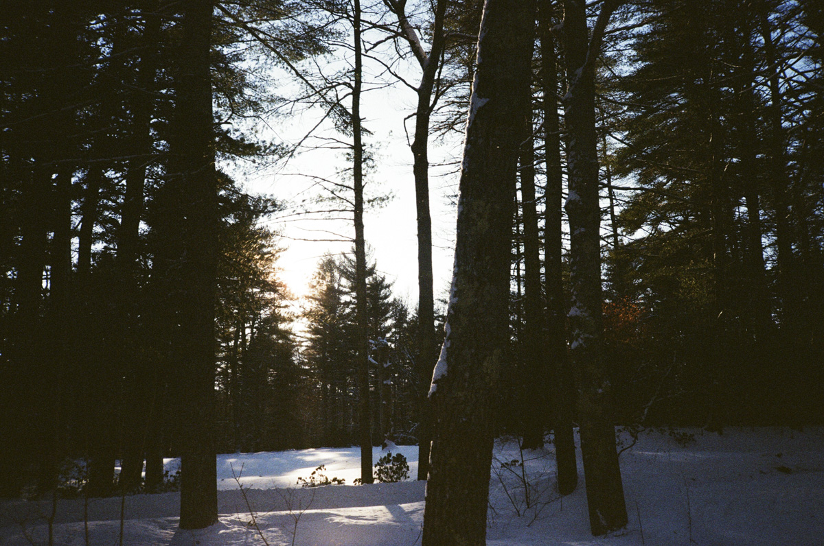 35mm winter in RI18.jpg