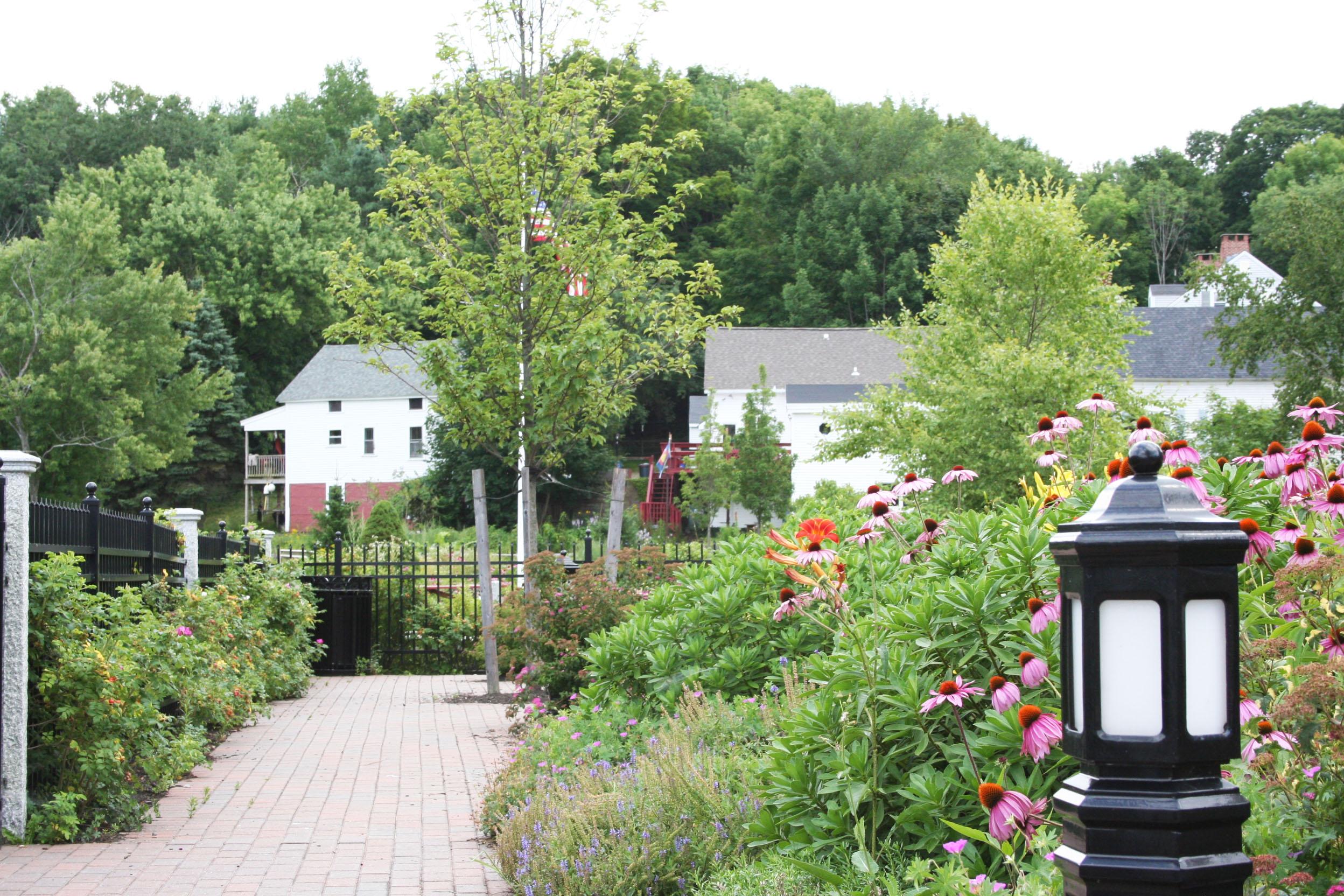 2009-08-06 site photos 031 improved.jpg