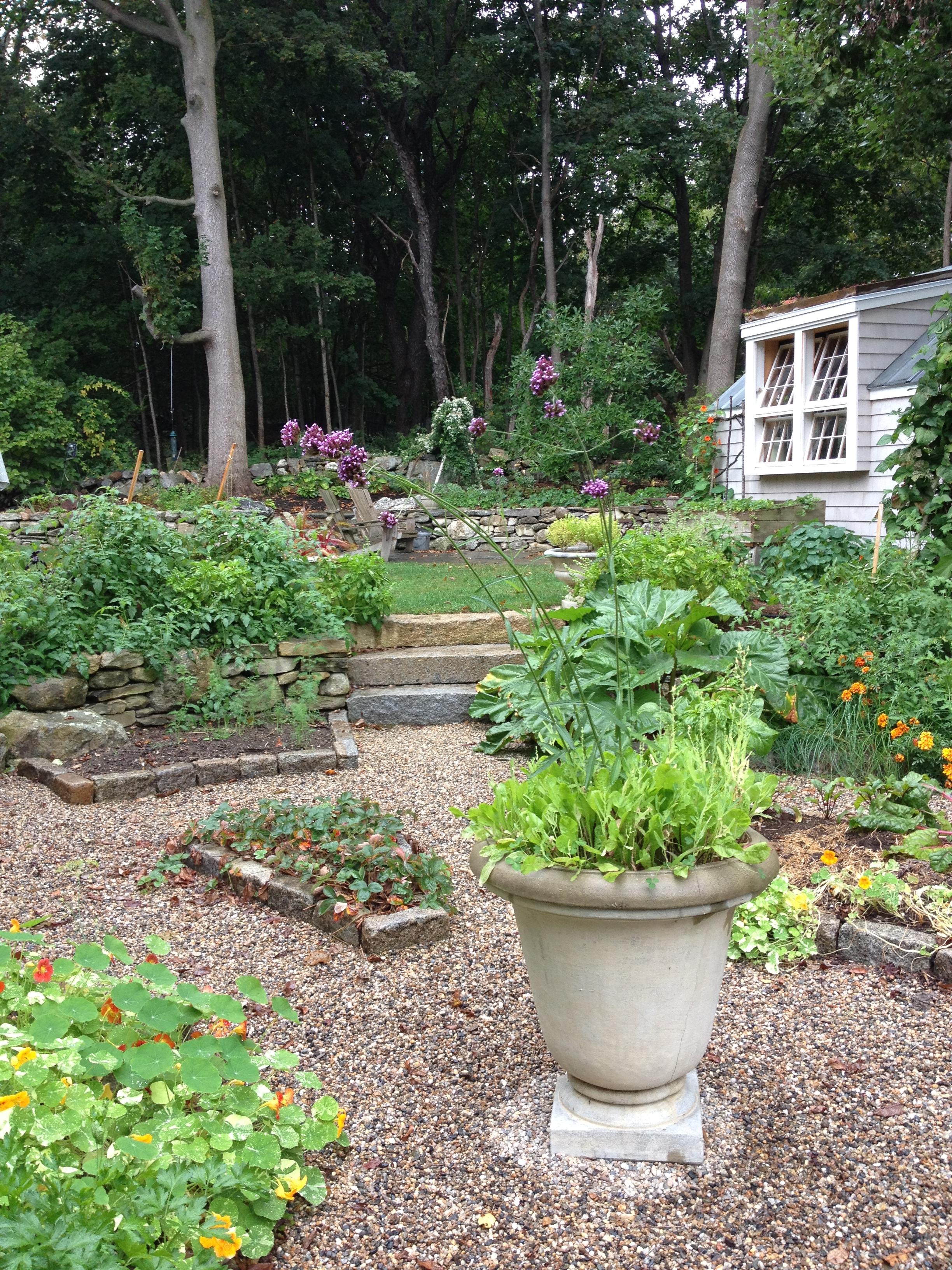 Edible City Garden