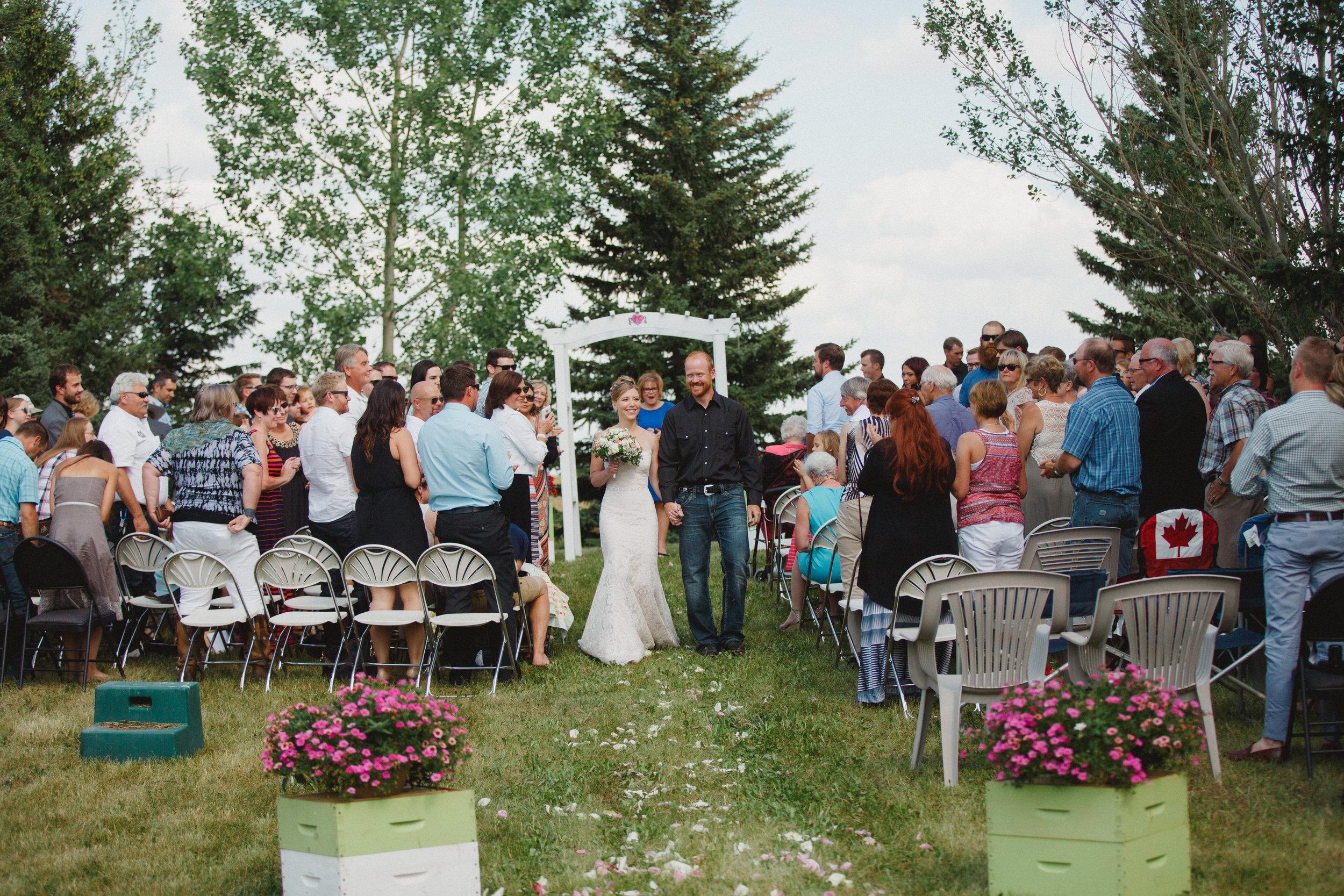 bee themed backyard wedding