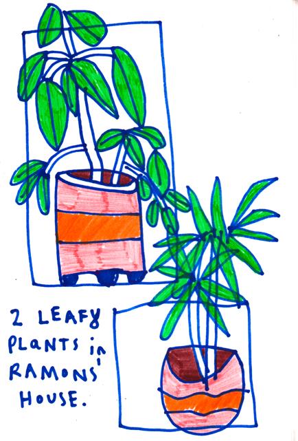 ramonplants.jpg