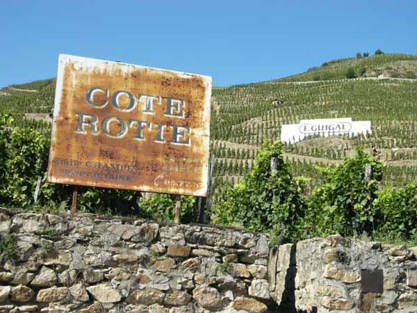 cote_rotie_vineyards.jpg