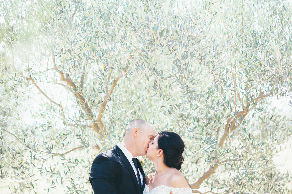 Bride and Groom sharing a kiss within the olive grove at Pialligo Estate - Canberra Small Weddings