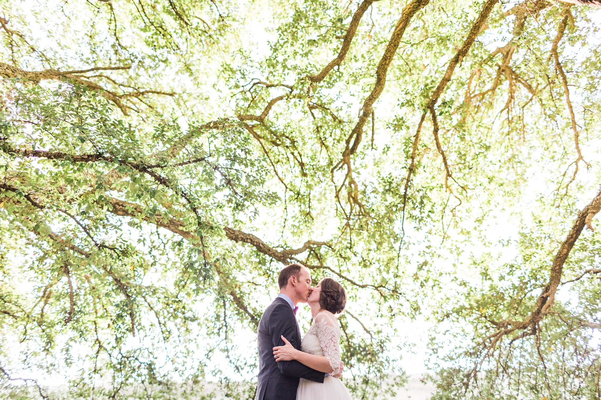 The newlywed couple sharing a kiss in front of the cork trees at the National Aboretum