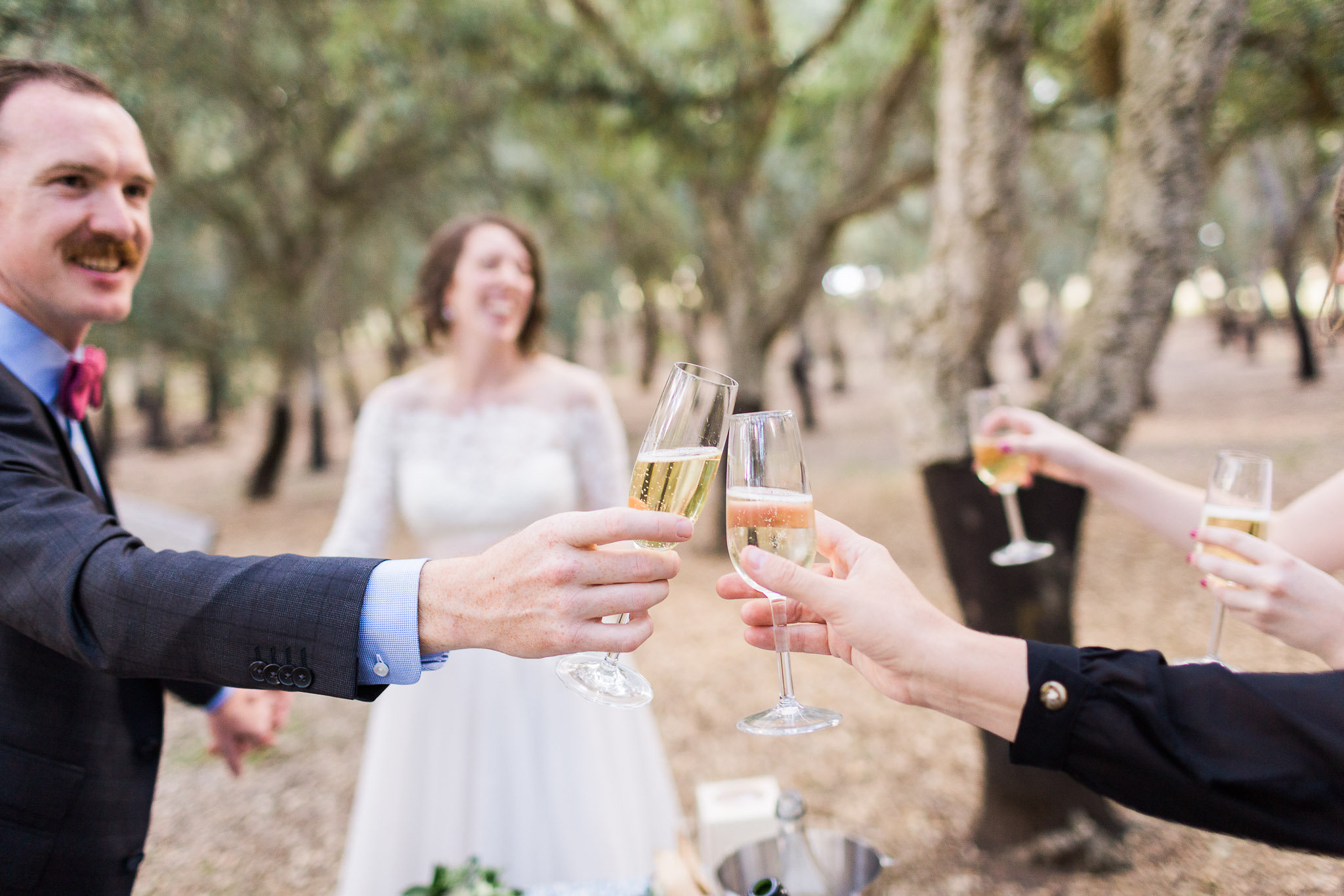 Bride and groom cheers with champagne at their wedding in Canberra