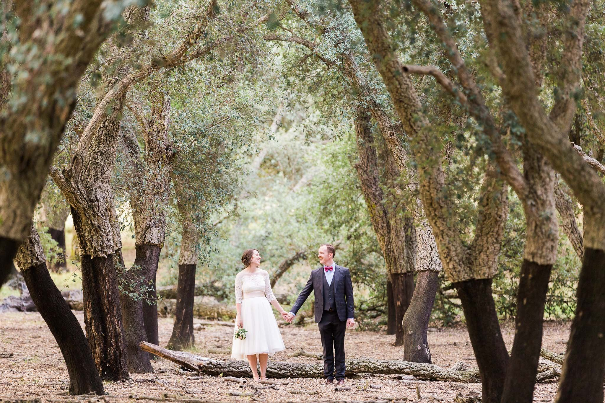 Bride and groom pose for photographs in a row of cork trees at the National Arboretum