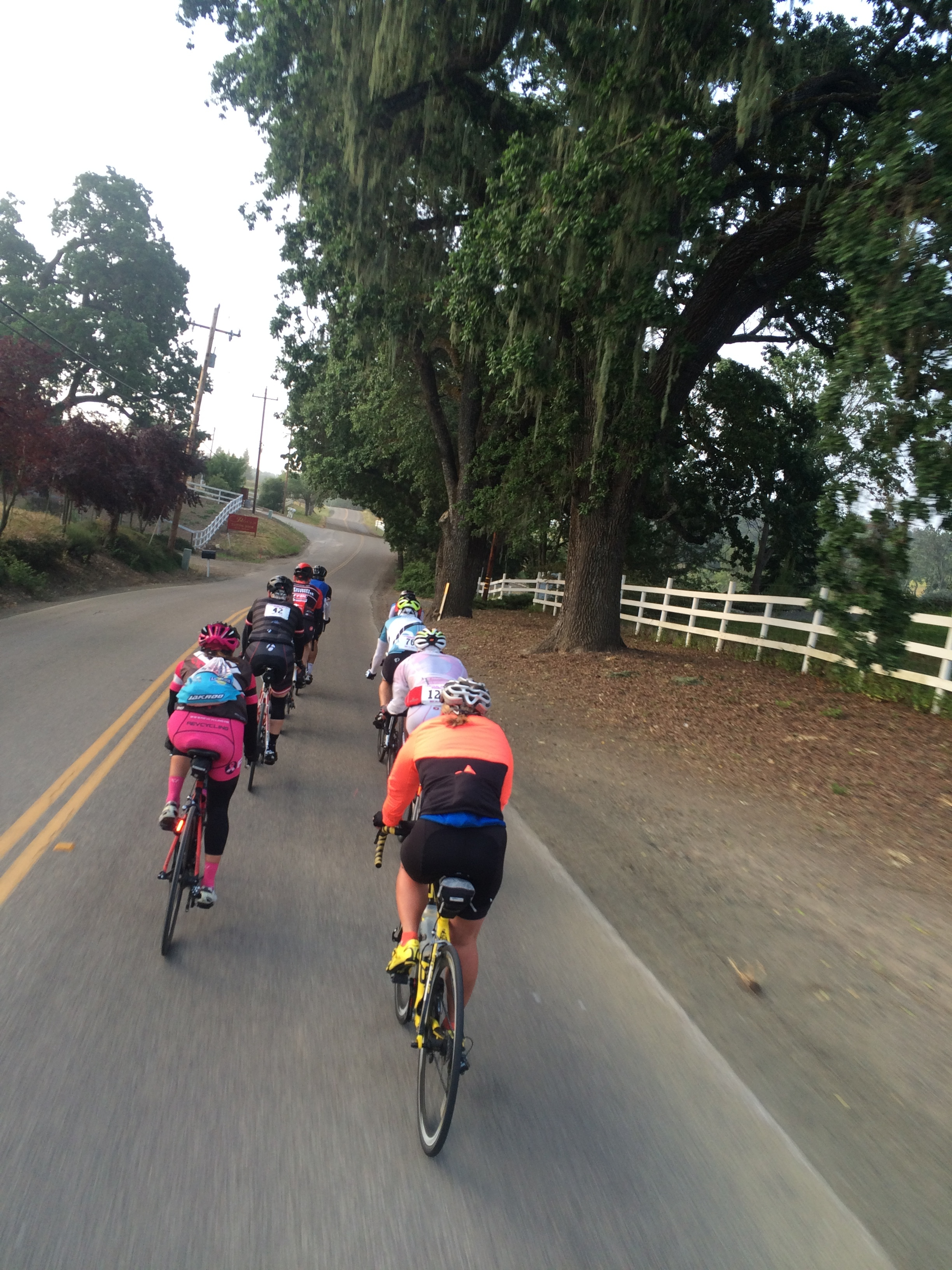 Despite a wrong turn, I'm riding with the lead group, and it's fun! :-)