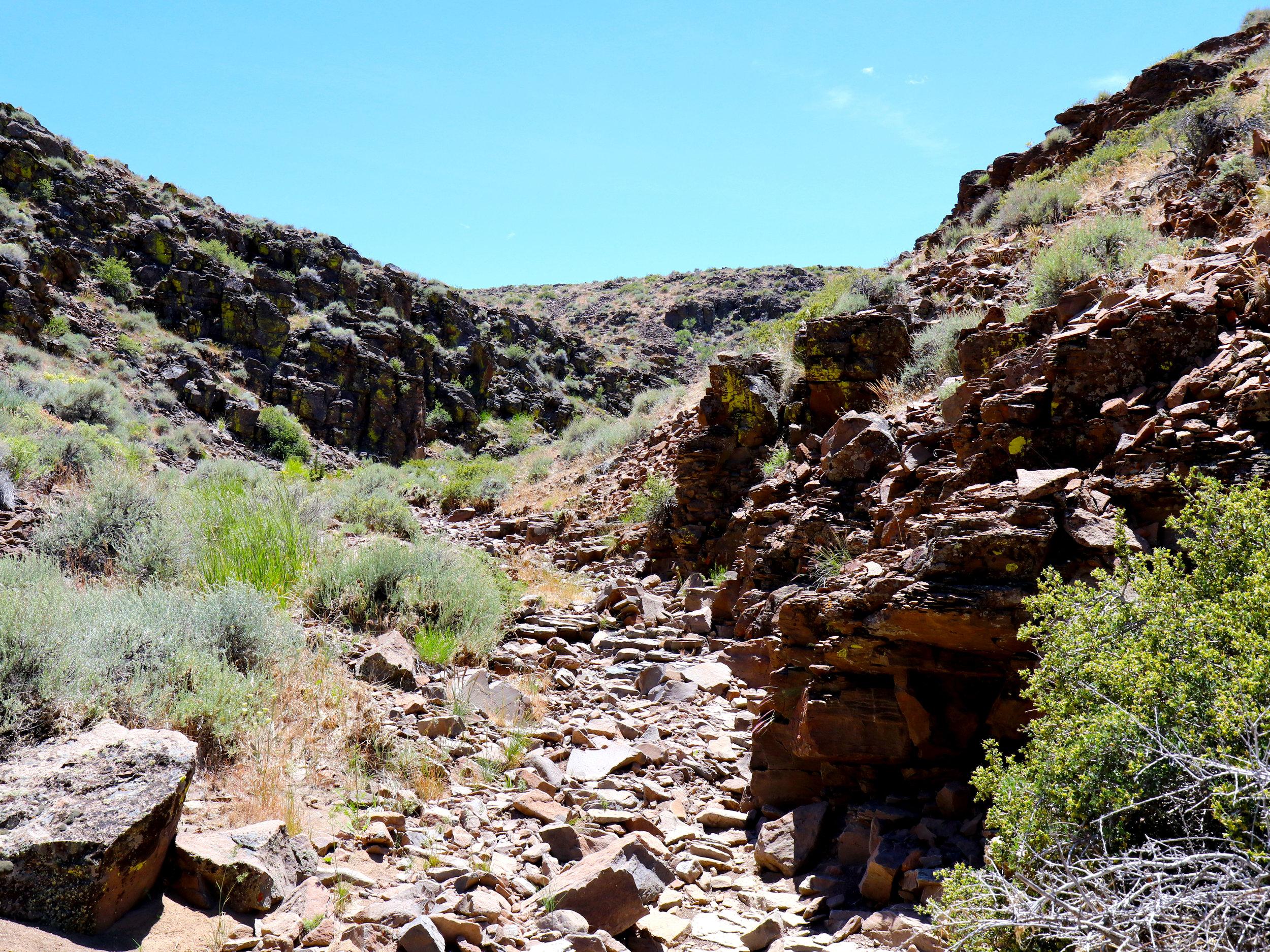 gifford-canyon2.jpg