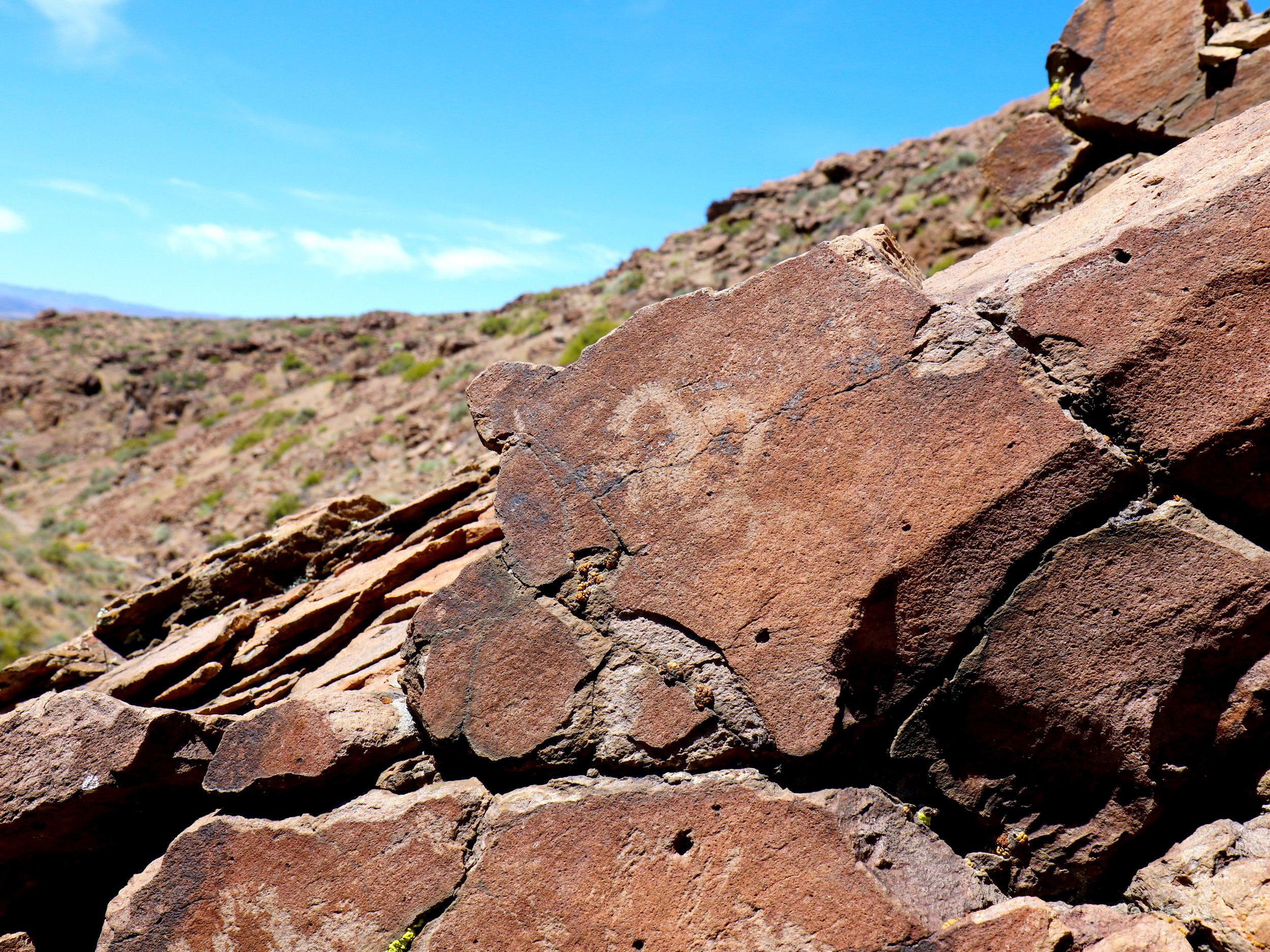 gifford-canyon13.jpg