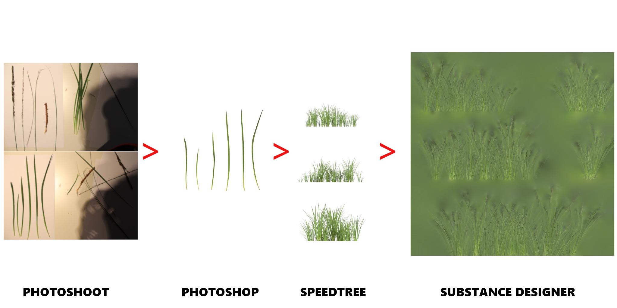 BTS_Grass.png