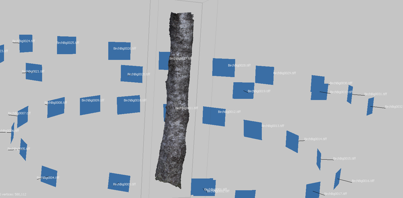 Photogrammetry_Tree.PNG
