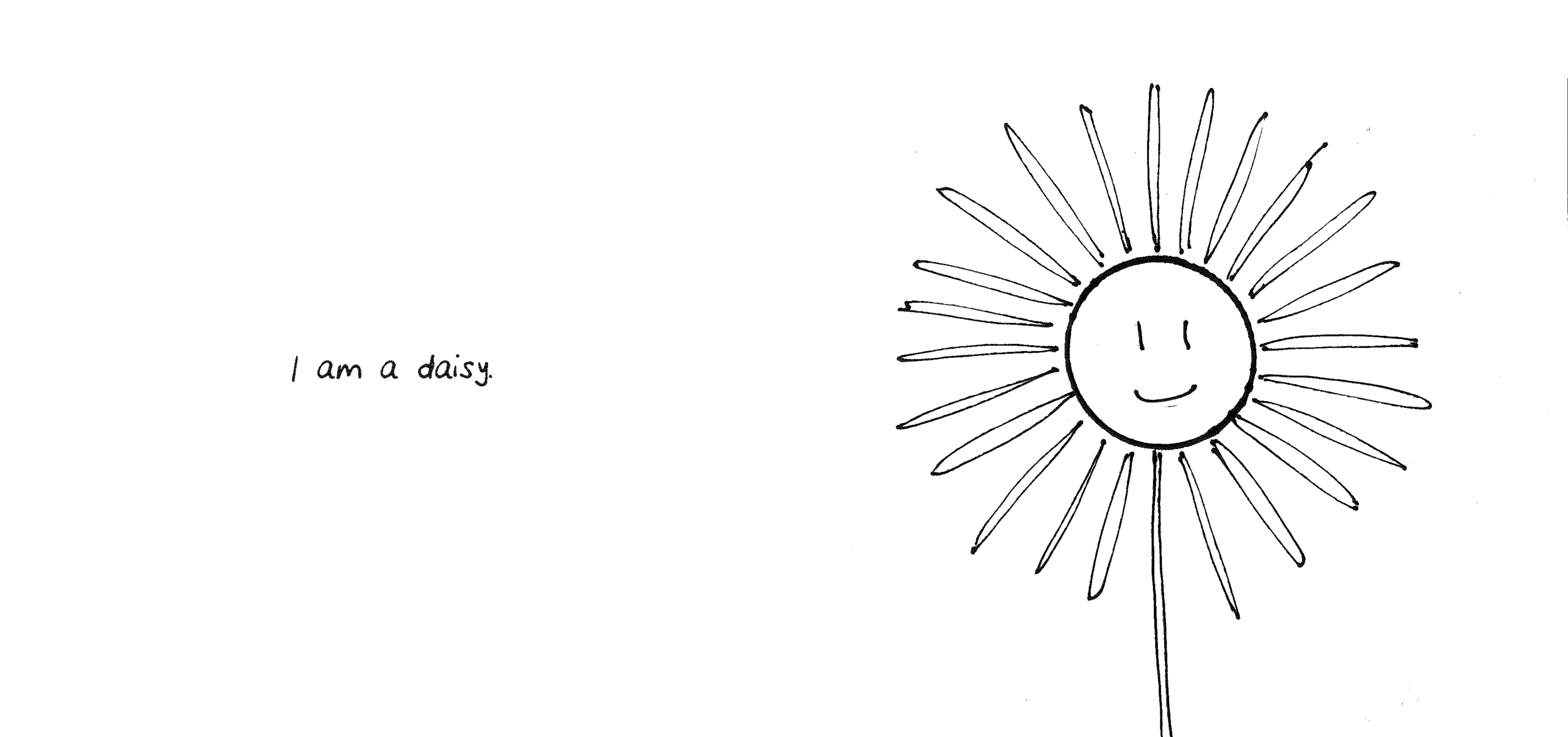 S&B Science Of A Daisy_Page_02.png